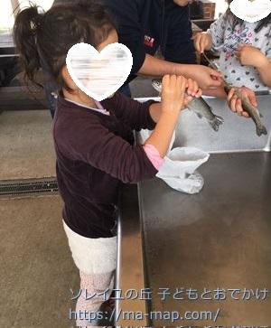 ニジマスを洗う女の子